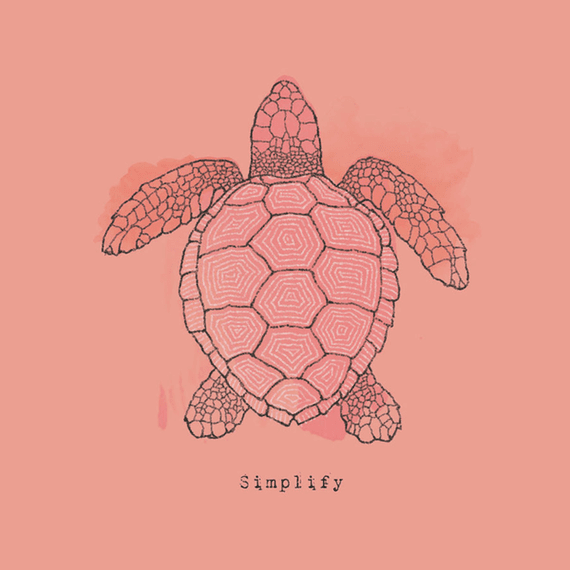 Simplify Turtle Wall Art