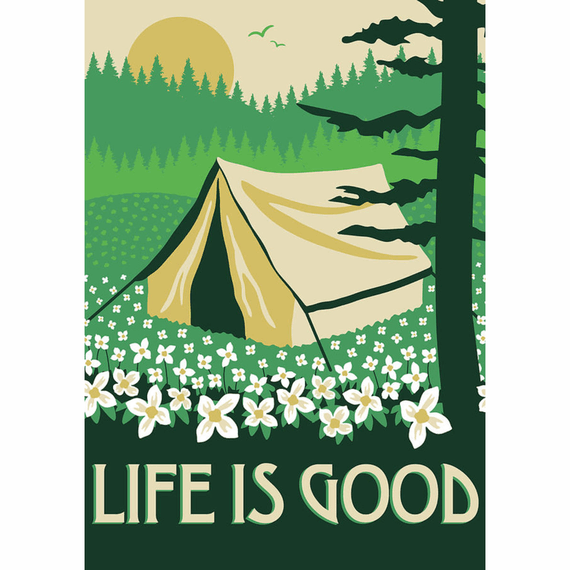Wildflower Camp 16X20 Poster