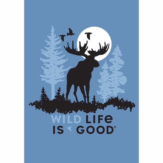 Wildlife Moose 16X20 Poster