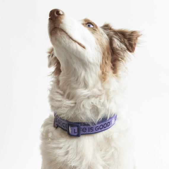 Pet Supplies | Life is Good® Official Website