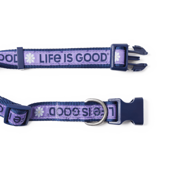 Daisy LIG Dog Collar