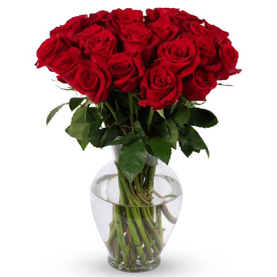 Life is Good Roses with Vase