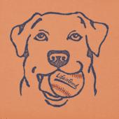 Men's Fetch Baseball Crusher Tee