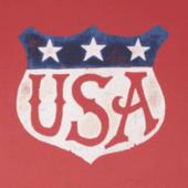 Men's USA Shield Crusher Tee