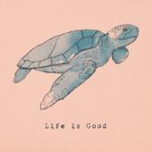 Women's Sea Turtle Crusher Vee
